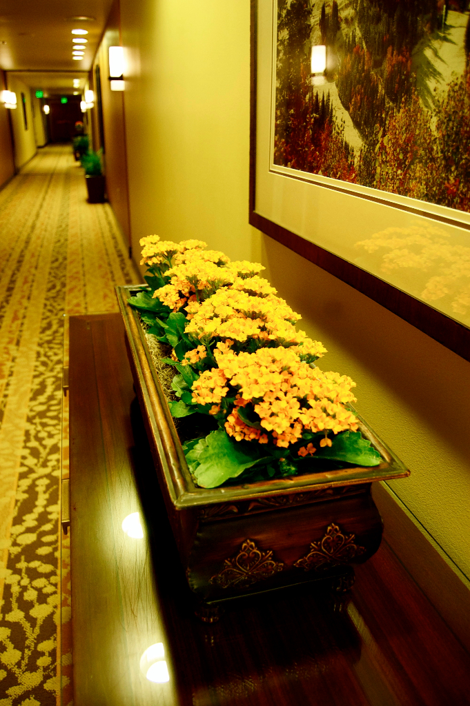 flower interiorscape design