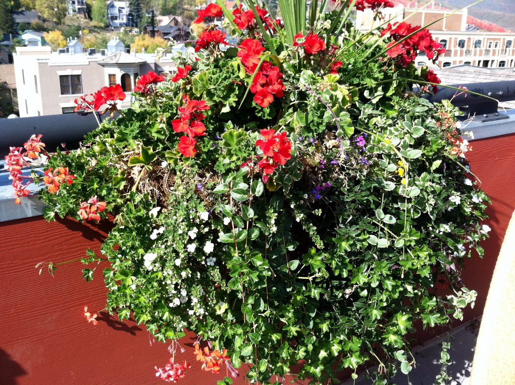 office outdoor planters Utah