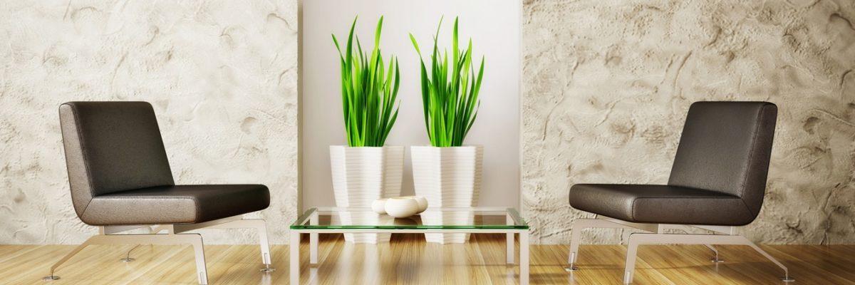 Indoor Plant Service