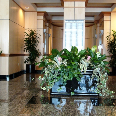 interior flower landscaping