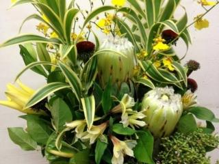 Office Floral Arrangements Inside Office Floral Arrangements Floral Arrangements Utah Living Creations