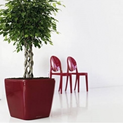Indoor plant containers