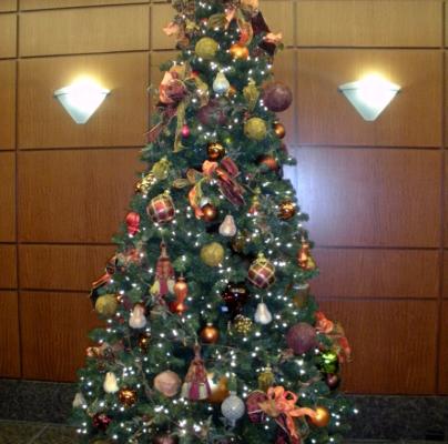 Holiday Trees Utah