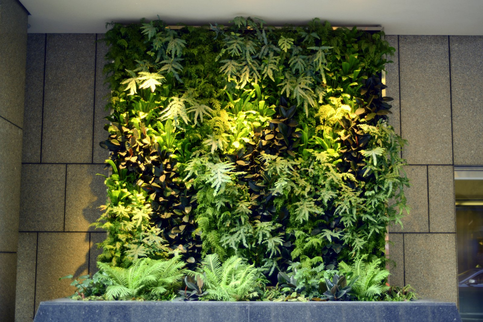 95f1db3d5 Beautify Your Office Interiorscape with a Living Vertical Garden