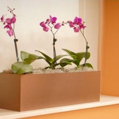 floral centerpieces Utah