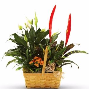 funeral floral arrangements