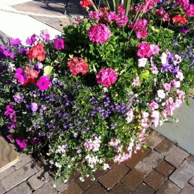 office outdoor planters Utah