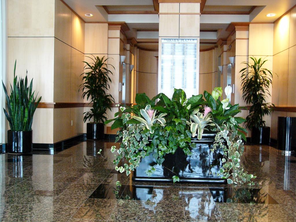 interior flower landscaping