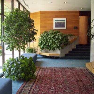 interiorscape design