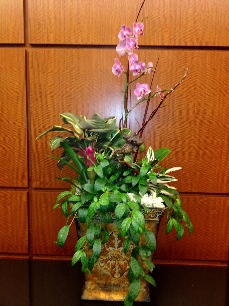 flower interiorscape design