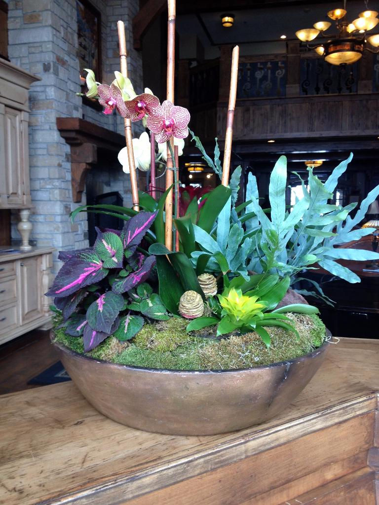 flower interiorscapes